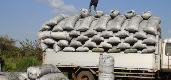 NFA Gulu Office Stuck With Over 1000 Bags of Impounded Charcoal