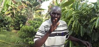 Gulu farmer earns big from coffee