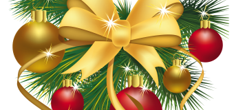 A Merry Christmas and a Happy New  Year to you our Dear Readers
