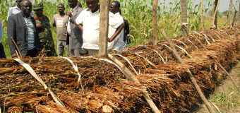 Agriculture Minister Visits  Gulu Farmers, Urges them to Embrace Cooperatives