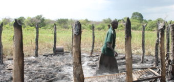 10 Feared Kidnapped, 40 Huts Razed in Renewed Fight over Apaa land