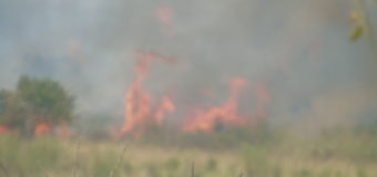 Wildfire Kills Gulu Woman