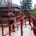 New Private Abattoir Opens in Gulu